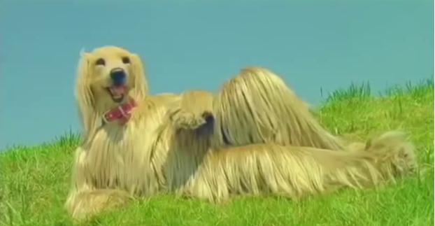 """Vídeo del día """"Calbee Cookies"""" o el perro japonéscreepy"""